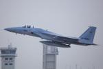 norimotoさんが、新田原基地で撮影した航空自衛隊 F-15J Eagleの航空フォト(写真)