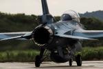 ありす!さんが、松島基地で撮影した航空自衛隊 F-2Bの航空フォト(写真)