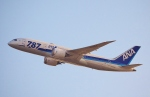 鉄バスさんが、伊丹空港で撮影した全日空 787-8 Dreamlinerの航空フォト(写真)