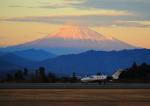 タミーさんが、静岡空港で撮影した岡山航空 510 Citation Mustangの航空フォト(写真)