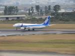 SKY☆MOTOさんが、仙台空港で撮影した全日空 737-881の航空フォト(写真)
