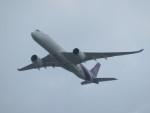 T_pontaさんが、成田国際空港で撮影したタイ国際航空 A350-941XWBの航空フォト(写真)