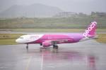 kumagorouさんが、新石垣空港で撮影したピーチ A320-214の航空フォト(飛行機 写真・画像)