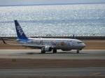 SKY☆MOTOさんが、中部国際空港で撮影した全日空 737-881の航空フォト(写真)