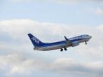SKY☆MOTOさんが、中部国際空港で撮影した全日空 737-781の航空フォト(写真)