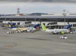 SKY☆MOTOさんが、中部国際空港で撮影したソラシド エア 737-86Nの航空フォト(写真)