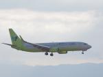 ガスパールさんが、関西国際空港で撮影したジンエアー 737-8SHの航空フォト(写真)