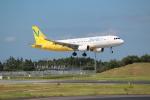 OMAさんが、成田国際空港で撮影したバニラエア A320-214の航空フォト(写真)