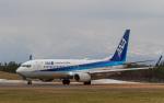 ひげじいさんが、庄内空港で撮影した全日空 737-8ALの航空フォト(写真)