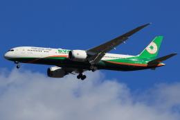 speedbirdさんが、成田国際空港で撮影したエバー航空 787-9の航空フォト(写真)