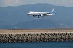 GNPさんが、徳島空港で撮影した全日空 A321-211の航空フォト(写真)