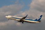 GNPさんが、徳島空港で撮影した全日空 737-881の航空フォト(写真)