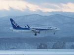 noshi2さんが、旭川空港で撮影した全日空 737-781の航空フォト(写真)
