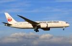 kaeru6006さんが、成田国際空港で撮影した日本航空 787-8 Dreamlinerの航空フォト(写真)