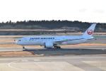 ハヤテBRさんが、成田国際空港で撮影した日本航空 787-8 Dreamlinerの航空フォト(写真)