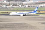 ハヤテBRさんが、羽田空港で撮影した全日空 787-8 Dreamlinerの航空フォト(写真)