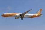 ★azusa★さんが、シンガポール・チャンギ国際空港で撮影したスクート 787-9の航空フォト(写真)