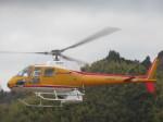 ランチパッドさんが、静岡ヘリポートで撮影した東邦航空 AS350B Ecureuilの航空フォト(写真)