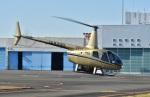 Soraya_Projectさんが、東京ヘリポートで撮影した賛栄商事 R66の航空フォト(写真)