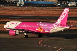 M.Ochiaiさんが、宮崎空港で撮影したピーチ A320-214の航空フォト(写真)