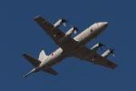 木人さんが、習志野演習場で撮影した海上自衛隊 P-3Cの航空フォト(写真)