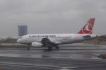 pringlesさんが、アタテュルク国際空港で撮影したターキッシュ・エアラインズ A319-132の航空フォト(写真)