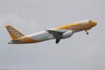 NIKEさんが、デンパサール国際空港で撮影したスクート A320-232の航空フォト(写真)