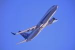 kamerajiijiさんが、羽田空港で撮影した全日空 737-881の航空フォト(写真)