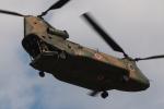 木人さんが、習志野演習場で撮影した陸上自衛隊 CH-47JAの航空フォト(写真)