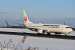 空が大好き!さんが、秋田空港で撮影した日本航空 737-846の航空フォト(写真)