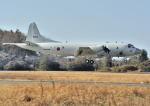 パンサーRP21さんが、下総航空基地で撮影した海上自衛隊 P-3Cの航空フォト(写真)