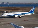 SK51Aさんが、羽田空港で撮影した全日空 787-8 Dreamlinerの航空フォト(写真)