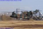 Chofu Spotter Ariaさんが、習志野演習場で撮影した陸上自衛隊 CH-47JAの航空フォト(写真)