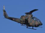 チャーリーマイクさんが、習志野演習場で撮影した陸上自衛隊 AH-1Sの航空フォト(写真)