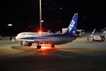 JA1118Dさんが、羽田空港で撮影した全日空 737-881の航空フォト(写真)