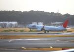 ふじいあきらさんが、成田国際空港で撮影した日本航空 737-846の航空フォト(写真)