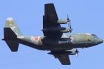 ちゅういちさんが、習志野演習場で撮影した航空自衛隊 C-130H Herculesの航空フォト(写真)