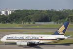 安芸あすかさんが、シンガポール・チャンギ国際空港で撮影したシンガポール航空 A380-841の航空フォト(写真)