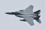 おぺちゃんさんが、米子空港で撮影した航空自衛隊 F-15DJ Eagleの航空フォト(写真)