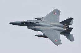 おぺちゃんさんが、米子空港で撮影した航空自衛隊 F-15DJ Eagleの航空フォト(飛行機 写真・画像)