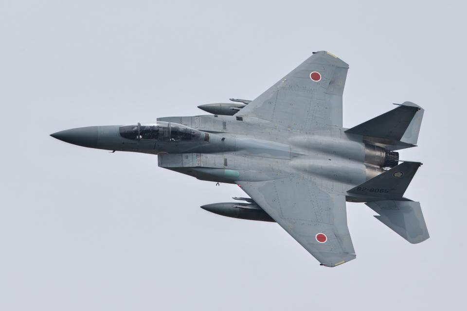 おぺちゃんさんの航空自衛隊 Mitsubishi F-15DJ Eagle (82-8065) 航空フォト