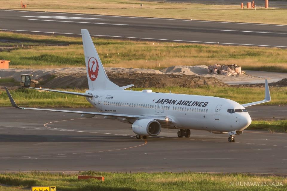 RUNWAY23.TADAさんの日本航空 Boeing 737-800 (JA306J) 航空フォト