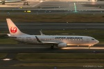 RUNWAY23.TADAさんが、羽田空港で撮影した日本航空 737-846の航空フォト(写真)