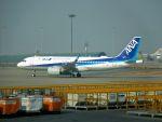 まいけるさんが、北京首都国際空港で撮影した全日空 A320-271Nの航空フォト(写真)