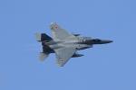 tsubameさんが、築城基地で撮影した航空自衛隊 F-15J Eagleの航空フォト(写真)