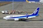 とらとらさんが、中部国際空港で撮影した全日空 737-781の航空フォト(写真)