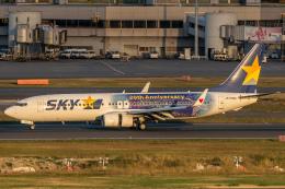 RUNWAY23.TADAさんが、羽田空港で撮影したスカイマーク 737-81Dの航空フォト(写真)