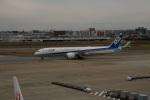 masashiiiさんが、鹿児島空港で撮影した全日空 787-9の航空フォト(写真)