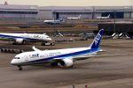 まいけるさんが、羽田空港で撮影した全日空 787-9の航空フォト(写真)
