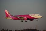 JA8037さんが、成田国際空港で撮影したピーチ A320-214の航空フォト(写真)